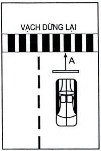 Bài thi dừng xe nhường đường cho người đi bộ
